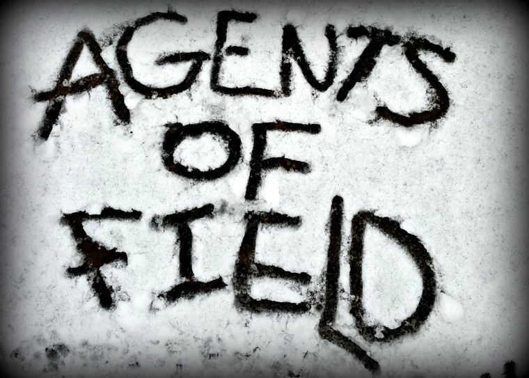 Agents snow