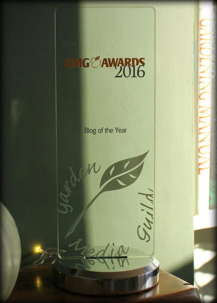 gmg-award